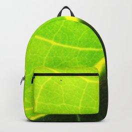 Diagonal Channel Backpack