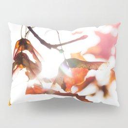 Autumn Sonata II Pillow Sham