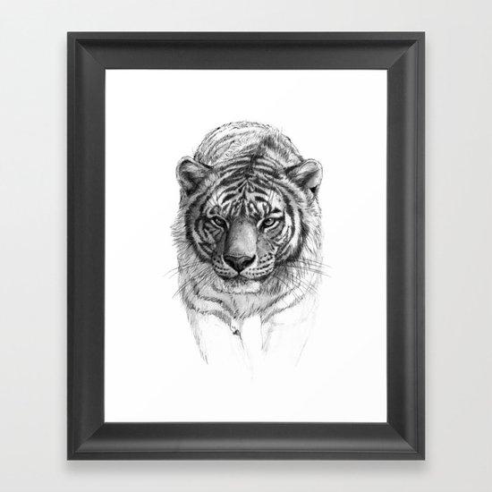 Tiger SK0102 Framed Art Print
