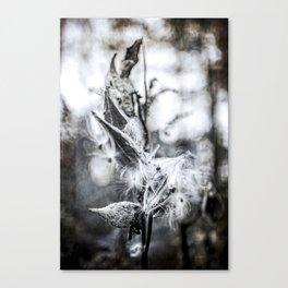 Rust_02 Canvas Print