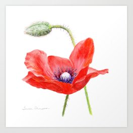 Red Poppy by Teresa Thompson Art Print