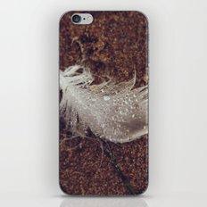 Beach Feathers 2 iPhone Skin