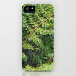 Fern Fronds iPhone Case