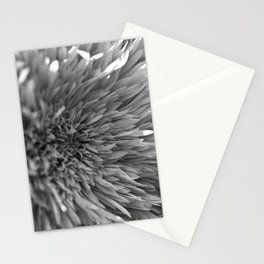 Puffed Stationery Cards
