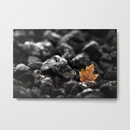 Winter's Flame Metal Print