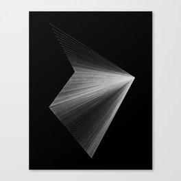 lines: reversed Canvas Print