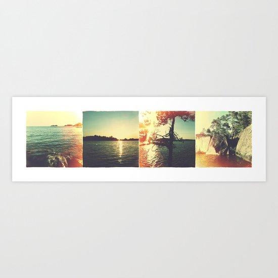 Swedish summer Art Print