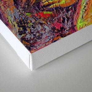 Discretion Canvas Print