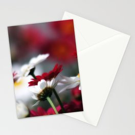 Blumenwiese Stationery Cards