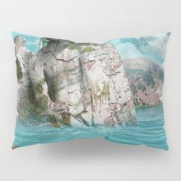 the find Pillow Sham