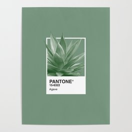 Pantone Series – Agave Poster