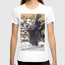 North American Bison by Teresa Thompson T-shirt