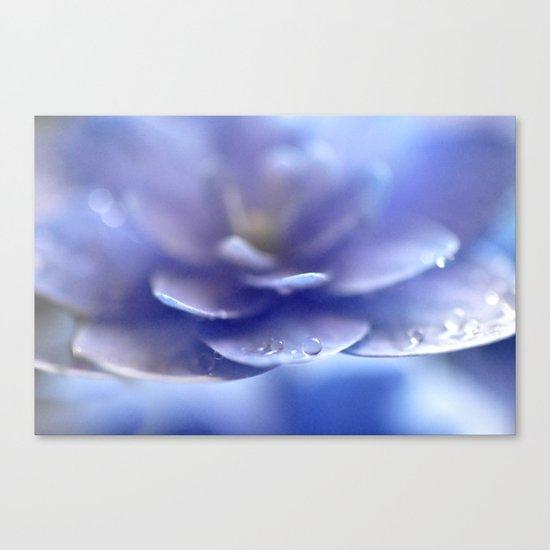 Enchantress... Canvas Print