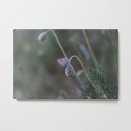 Flower Photography by muhammed doğan Metal Print