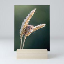 Harvest Time. Mini Art Print