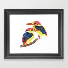 Kingfisher IV Framed Art Print