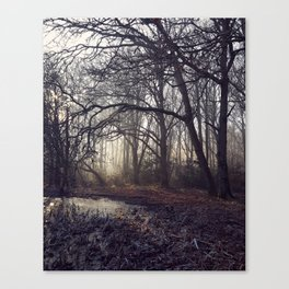 Dawn Shadow Canvas Print