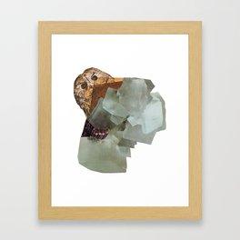 Cryptic Framed Art Print