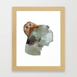 Cryptic Framed Art Print