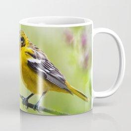 Spring Oriole Coffee Mug