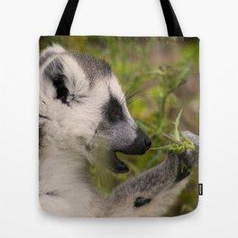 Lemur #1 Tote Bag