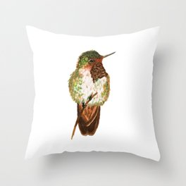 Volcano Hummingbird Throw Pillow