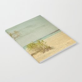 Seclusion Notebook