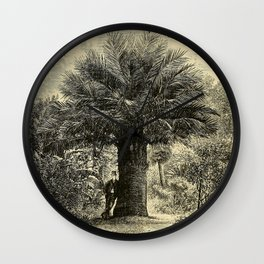 The Coqaito Nut or Wine Palm Wall Clock