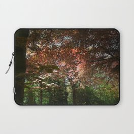 Autumn Beeches Laptop Sleeve