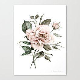 Faded Pink Rose Canvas Print