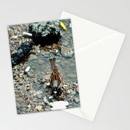 Bird in Bucharest Stationery Cards
