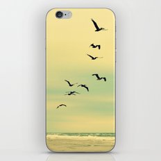 Across the Endless Sea iPhone & iPod Skin