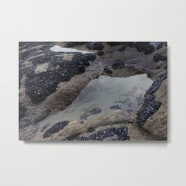 Rock Pool Amongst Mussel Beds Metal Print