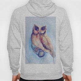 Owl Watercolor II Hoody