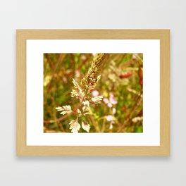 Fort Brag Flowers III Framed Art Print