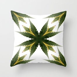 Standing Ovation.... Throw Pillow