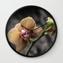Orange Orchid Wall Clock