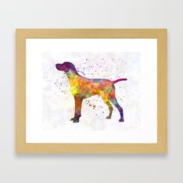 Hungarian Shorthaired Pointer in watercolor Framed Art Print