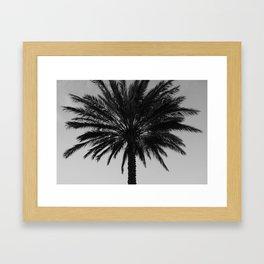Big Black and White Palm Tree Framed Art Print