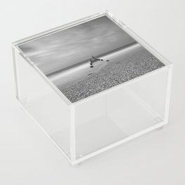 Shell Pile Acrylic Box