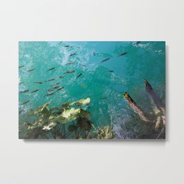 Fish In Greenblue Water Metal Print