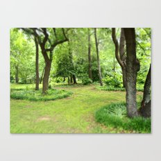 Kenilworth Marsh Canvas Print