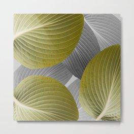 Beautiful Large Leaves #decor #society6 #buyart Metal Print
