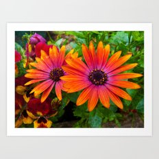 Two red flowers with added texture. Art Print