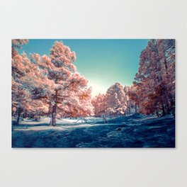 winter scene #society6 #decor #buyart Canvas Print