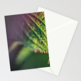 An accent tone Stationery Cards