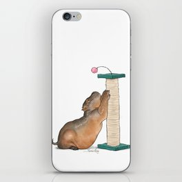 HippoCat at His Post iPhone Skin