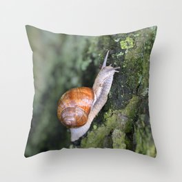 Snail 1 Throw Pillow