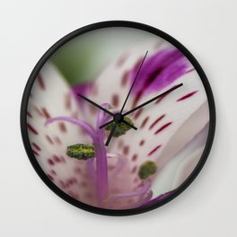 Lily Of The Incas Wall Clock