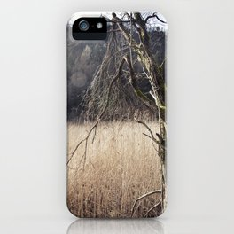 A big leafless tree in a swamp iPhone Case